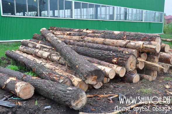 timber-dry-1m