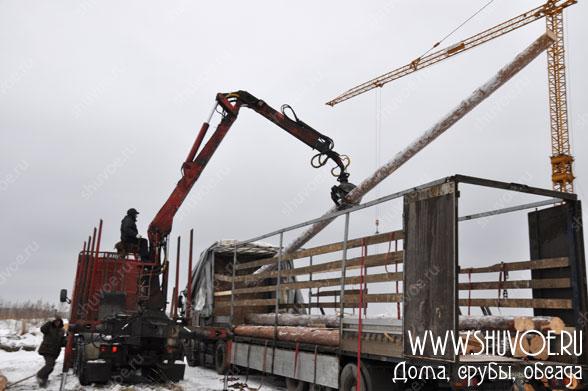 dostavka-lesa-arhangelsk-5