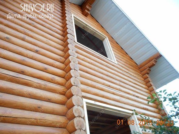 obsada-1523-shuvoe-3
