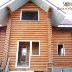 obsada-1523-shuvoe-4