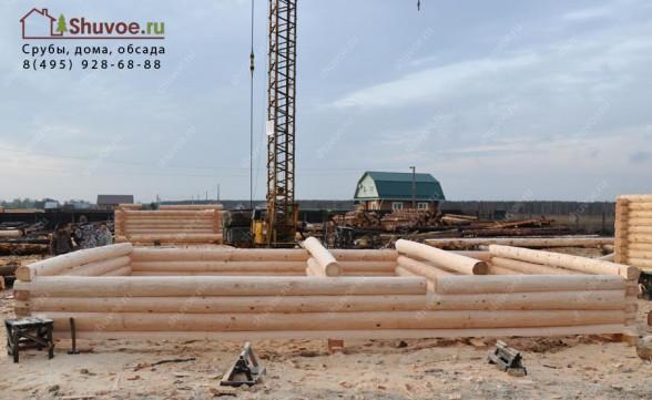 Строительство срубов в Шувое.